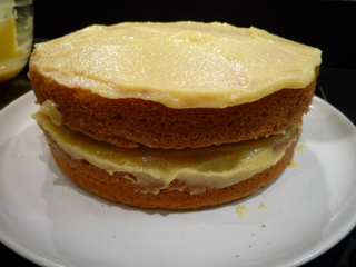 Place second layer of sponge on top of first and apply more curd on top of this