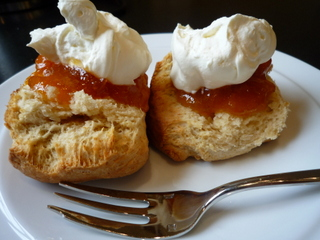 Buttermilk scones with homemade apricot jam and cream