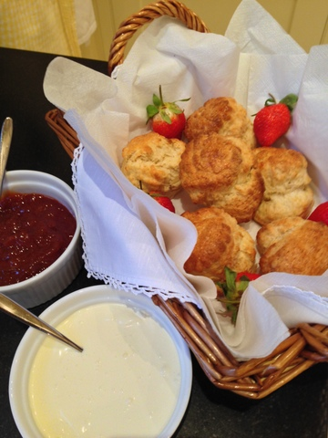 Buttermilk scones, homemade apricot jam & clotted cream
