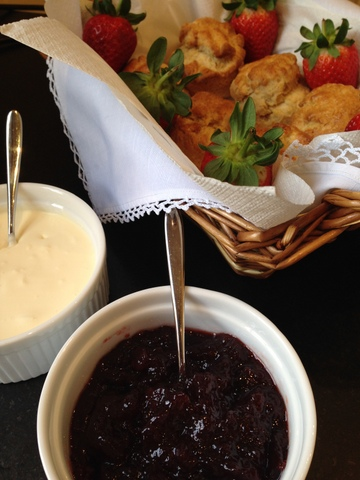 Scones, homemade jam & clotted cream